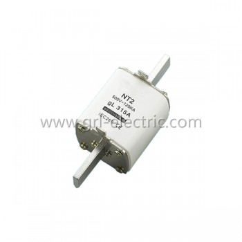 NH(NT) 2 Size Blade Fuse